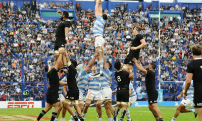 Pumas All Blacks